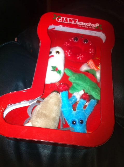 giant microbes nurse christmas box