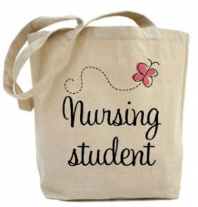 To Work on Not to Work While in Nursing School: That is the Question
