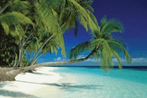 Have You Considered Caribbean Medical Schools?
