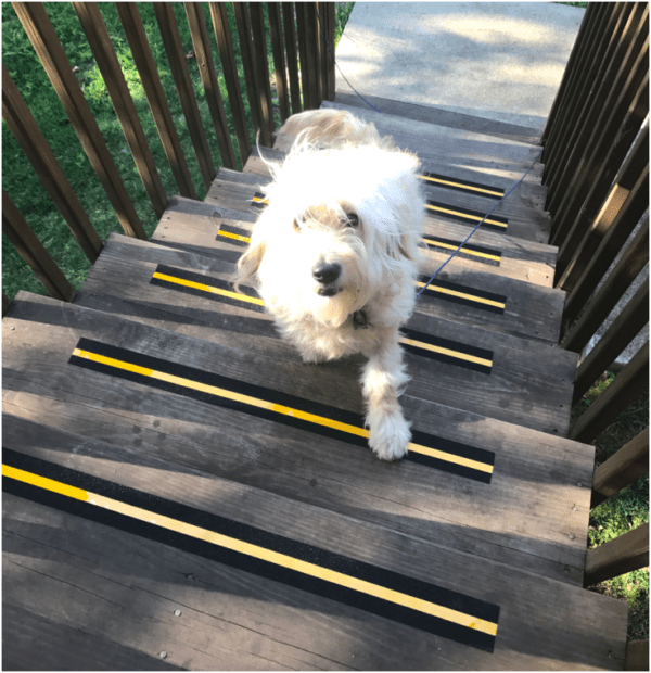 leeloo steps with anti skid post-its