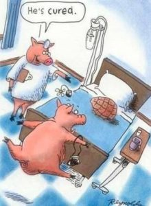 Cured Ham Pun Cartoon