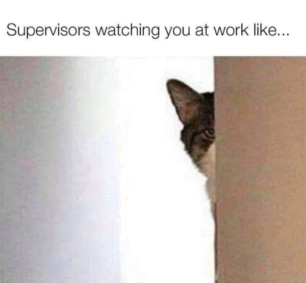 Supervisors watching you funny CNA meme